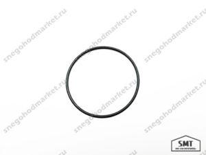 Кольцо уплотнительное 110500107 Буран