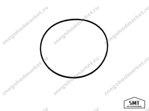 Кольцо уплотнительное 110500996 Буран